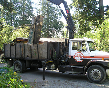 Unloading Wood for the Workshop